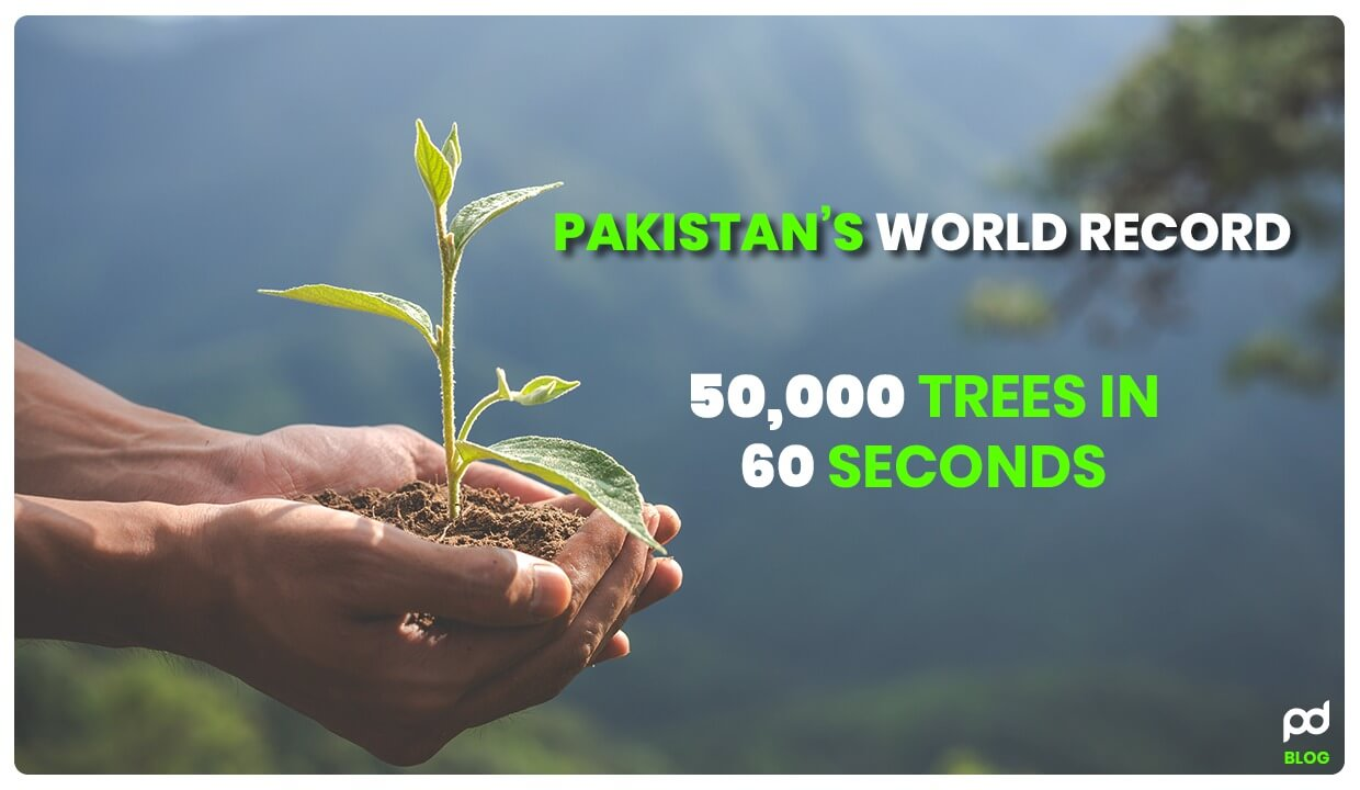 Pakistan's World Record To Plant 50,000 Trees In 60 Seconds